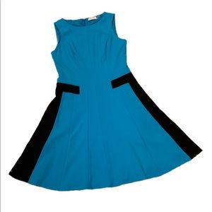NEW Calvin Klein Fit n Flare Dress S: 8